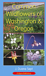 Common Wildflowers of WA & OR